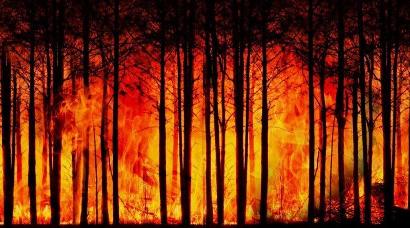 Bosbranden in de Amazone smelten gletsjers in de Andes en verergeren klimaatverandering