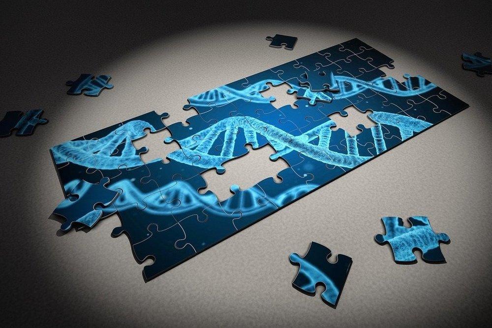 Kansen om onderscheid te maken tussen eeneiige tweelingen in forensisch onderzoek